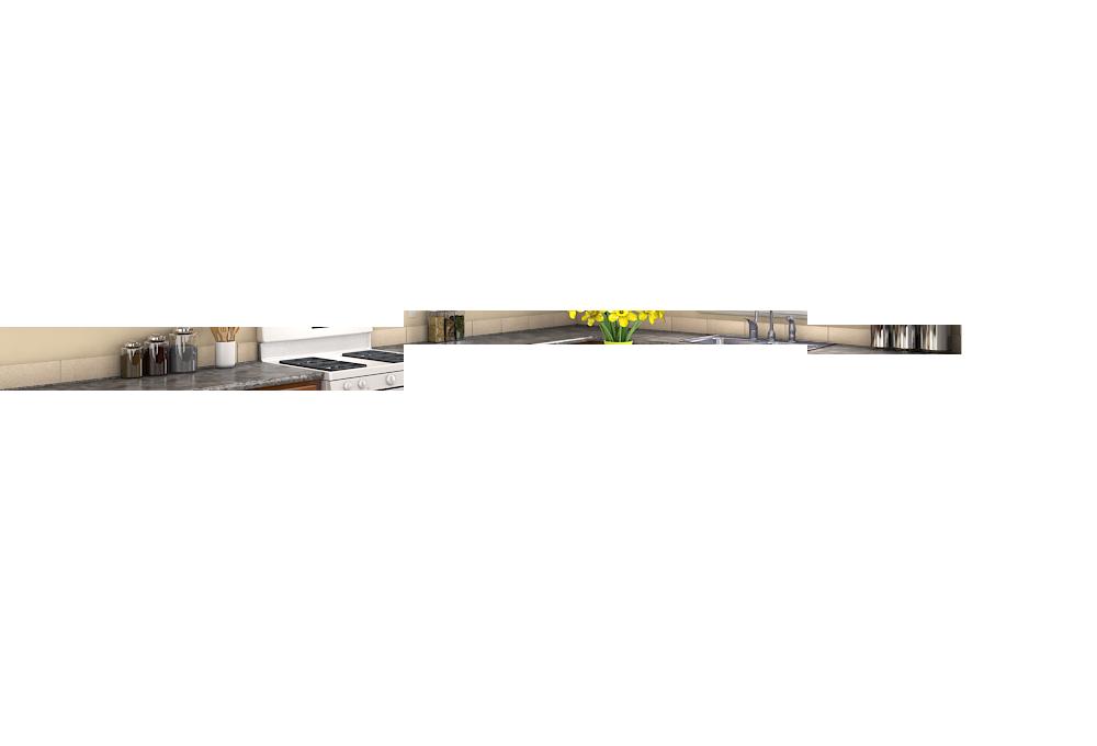Cellar - Salt (4x12)